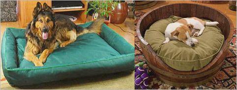 Товары для кошек Royal Canin - aibolitzooshop